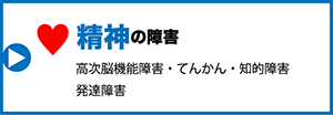 cat_box_seishin2
